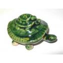Lykke Skildpadder