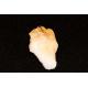 Citrin krystal spids, c