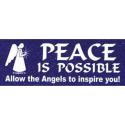Bumper sticker Peace is Possible